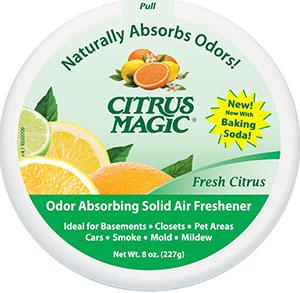 1. Citrus Magic Solid Air Freshener